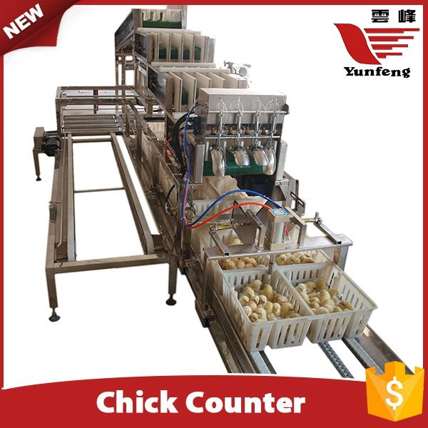 Yunfeng Chick Counting System
